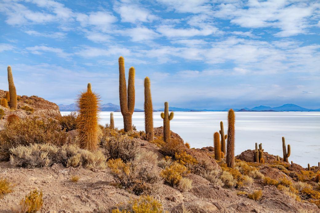 Top 5 des incontournables à voir en Bolivie