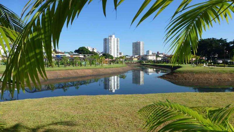 Pars en stage à Manaus, la ville au coeur de l'Amazonie !