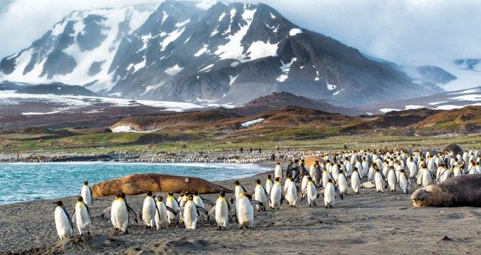 îles malouines climat