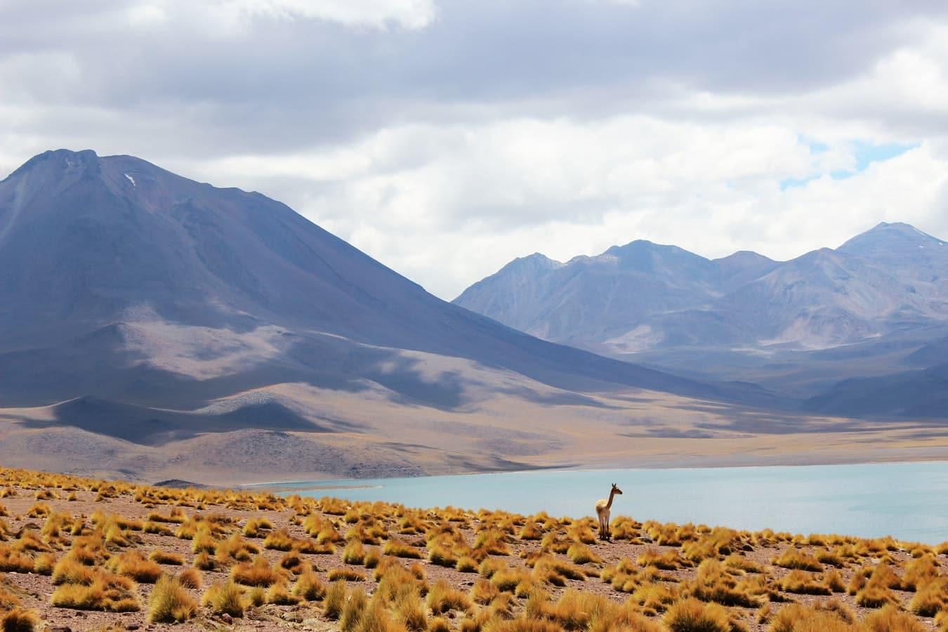 Stage au Chili, les destinations les plus populaires